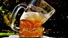 【お酒との上手な付き合い方】アスリートとお酒の関係の写真
