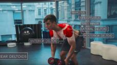 ダンベルで肩周りの筋肉を鍛えていこう!の写真