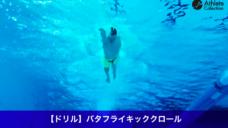 【コンビネーションへ繋げよう(6)】バタフライキッククロール(ドルフィンキッククロール)の写真