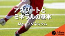 【アスリートとミネラルの基本】Mg:マグネシウムの写真
