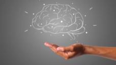 【脳を生かすための食事】栄養から考える脳のバイオハックの写真